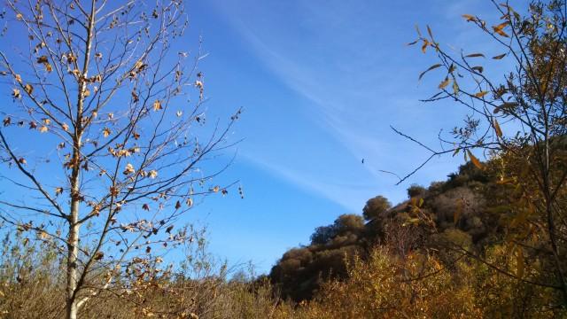 Open sky near San Juan Capistrano, CA.